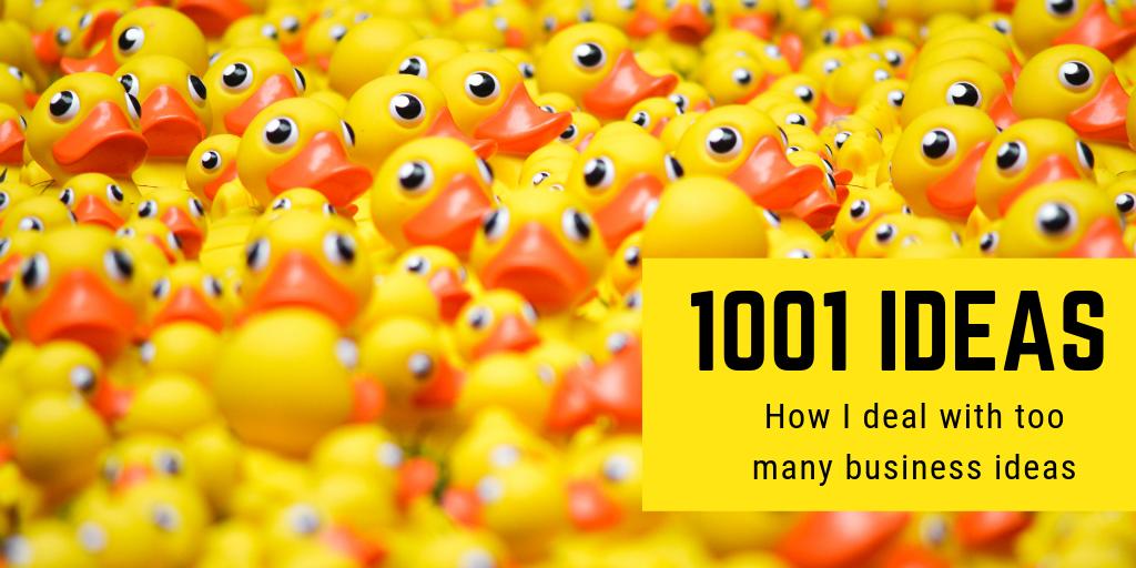Thousands ducks symbolizing too many business ideas